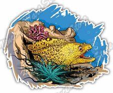 "Muraena Large Eel Fish Coral Reefs Ocean Car Bumper Vinyl Sticker Decal 5""X4"""