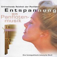 Entspannung mit Panflöte Musik von Johan Onvlee   CD   Zustand sehr gut