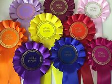 10 X Well Done Rosettes Great Value
