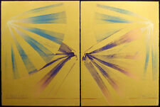 Scott Sandell Oceanweather #25 signed monoprint diptych SUBMIT AN OFFER