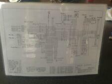 SUZUKI TS 250 Wiring diagram.