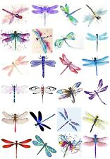 65 Mixed Dragonfly Small Sticky White Paper Stickers Labels New