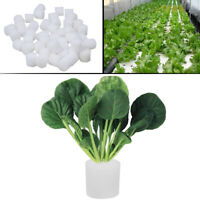 50 pcs Hydroponic Sponge Planting Gardening Tool Seedling Sponges for Greenhouse
