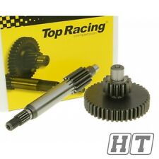 Top Racing Getriebe primär +21% 13/43 für Yamaha Aerox Cat 50 Aprilia Amico GL
