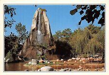 BR30336 Zoo de la Palmyre le Rocher et les flamants roses France