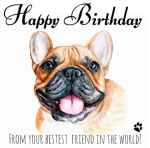 PERSONALISED BIRTHDAY CARD FROM THE DOG- FRENCH BULLDOG FRENCHIE PET BEST FRIEND