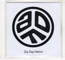 (HM147) Zig Zag Nation, Asian Dub Foundation - DJ CD