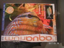 ** L'aquarium n°56 odorat des poissons / Discus Brun Rouge du Rio Moju