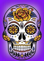Password/Web Address Book Day of the Dead 2-1