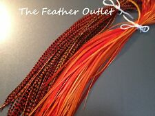 Lot 10 Grizzly Feathers Hair Extensions long thin skinny striped Real ORANGE