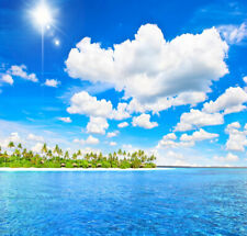 10x10ft Sunny Sky Cloud Blue Sea Palm Trees Photo Background Vinyl Backdrop Prop