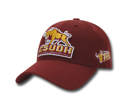 CSUDH Cal State Dominguez Hills Toros NCAA Low Crown Curved Baseball Cap Hat