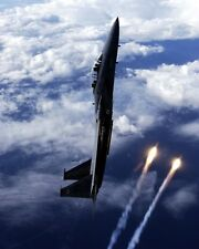 New 8x10 Photo: F-15 D Eagle Fighter Jet Aircraft of the 325th Fighter Wing