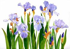 Iris Note Cards Set of Four 5 x 7 Blank Watercolor Reproductions