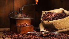 2 lbs Kenya AA Karundul Coffee Beans Finest Auction Lot Medium Roast Fresh Daily