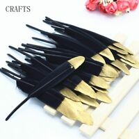 "FEATHERS X 5  LARGE  DUCK BLACK with GOLD TIP   5 - 7"" FREE UK P/P"