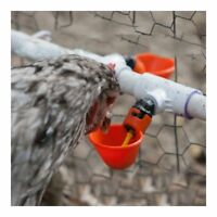 5 Pack Poultry Water Drinking Cups Chicken Hen Plastic Automatic Drinker USA Hot