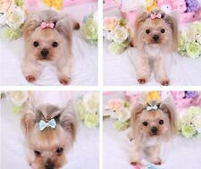 Dog Hair Bows with Alligator Clips - 2 PACK - USA Seller