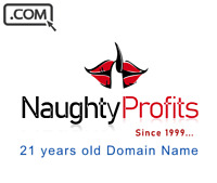 NaughtyProfits .com - Premium Brandable domain name for sale 21 years old