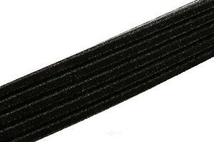 Serpentine Belt ACDelco GM Original Equipment 12634322
