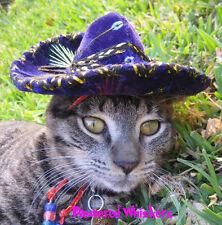 Pinata Purple Buckaroo Banzai miniature sombrero hat for dogs and cats
