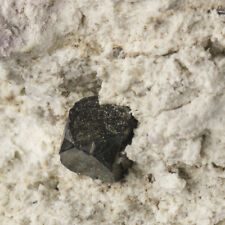 "9.5mm BIXBYITE Sharp Crystals on 3"" White Rhyolite Thomas Range Utah for sale"