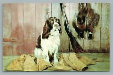 Hunting Hound w Partridge—Vintage Rifle Gun PC Dog Curteich Chrome ca. 1950S