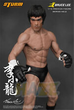 Bruce Lee Chinese Kung Fu Master 1/12 Pvc Figure Toy Collection 19cm