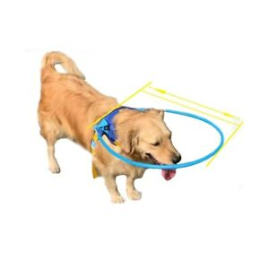 Anti-Collision Ring/Halo Harness For Visually Impaired Dogs Pets Safety Supplies