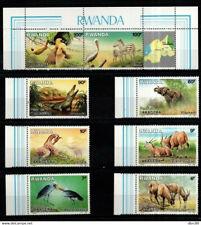 Rwanda 1987 animals, Akagera National Park