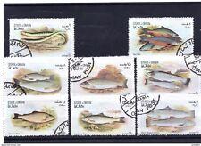 Fische Satz aus State of Oman (2)