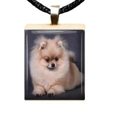 Pomeranian Puppy Scrabble Tile Pendant Handcrafted Recycled Jewelry Dog Charm