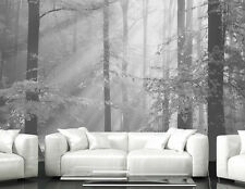 Sinfonia Della Foresta (Black and White) 12' x 8' (3,66m x 2,44m)-Wall Mural