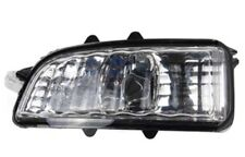 Spiegelblinker links Volvo V70 V50 S40 C30 S80 S60 Spiegel Blinker Außenspiegel