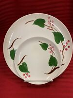 STANHOME IVY Blue Ridge Pottery 2 Dinner Plates & 3 Bread Plates