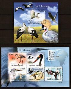 COMORES 2011 LES ECHASSIERS STORKS FLAMINGO BIRDS OISEAUX VOGEL AVES STAMPS MNH