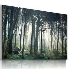 SUMMER VILLAGE MOUNTAINS TREES 3D Window View Canvas Wall Art W537 MATAGA .