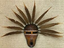 Native American Indigenous Ethnographic Style Gourd Feather Mask Troy Winsell 99