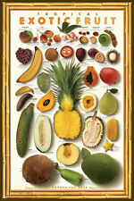 Tropical Exotic Fruit Mango Food Kitchen Papaya Gourmet Print Poster