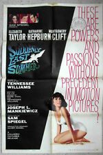 Original Filmplakat Suddenly Last Summer - Elizabeth Taylor -  USA 1960