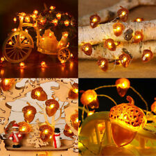 LED String Lights Acorn Light String Battery Powered Fairy Light Xmas Decor #HA2