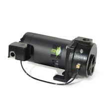 Ecoflo  Cast Iron  Deep Well Pump  1/2 hp 1200 gph 230 volt