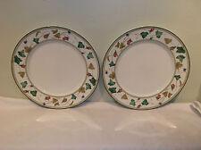 A Wonderful Pair of Lenox Summer Terrace Dinner Plates