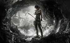 "12 Tomb Raider 9 - 2013 Video Game Art 22""x14"" Poster"