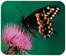 BLACK BUTTERFLY MOUSE PAD - 1/4 IN. INSECT BUG MOUSEPAD