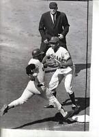 1965 Baseball Wire Photo, Ernie Banks Chicago Cubs Jim Hart San Francisco Giants