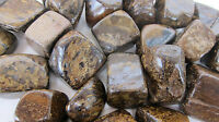 *ONE* Bronzite Tumbled Stone 30-35mm Chunky QTY1 Healing Crystal Courtesy