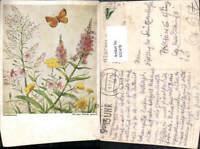 631478,Künstler Ak Mundgemalt R. De Vos Weideblumen Schmetterling Insekt Tiere