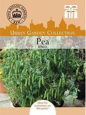 Thompson & Morgan-Kew urbano hortalizas-pea Bingo - 100 Semillas