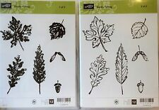 Stampin Up GENTLY FALLING clear mount stamps Leaves acorn fall maple Leaf